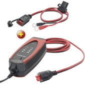 Lot : ProCharger 1.000 avec indicateur charge ProCharger - Louis 80