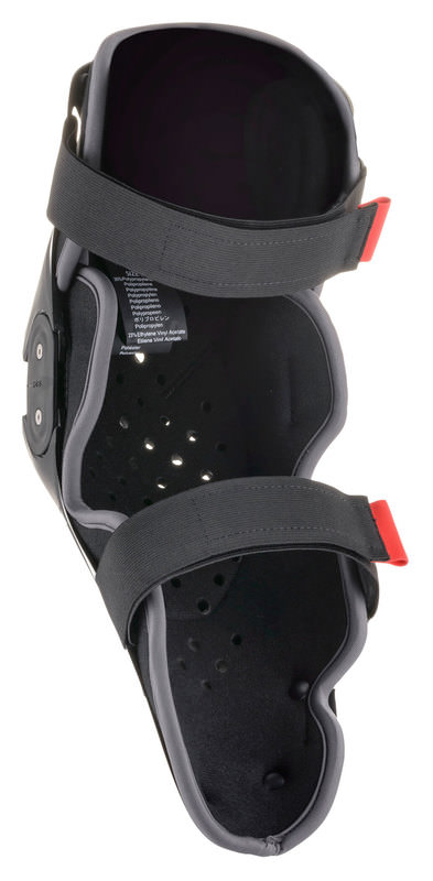 ALPINESTARS SX-1 V2